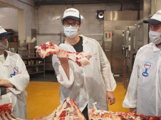 Rinderknochen im Wurstkurs herausgelöst.